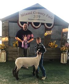 Junck Club Lambs :: Winners